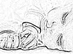 Сколько раз в день должен спать ребенок