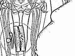 Что делать, если D-димер повышен при беременности?