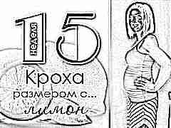 15 неделя беременности: что происходит с плодом и будущей мамой?