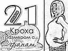 21 неделя беременности: что происходит с плодом и будущей мамой?