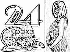24 неделя беременности: что происходит с плодом и будущей мамой?