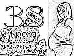 38 неделя беременности: что происходит с плодом и будущей мамой?