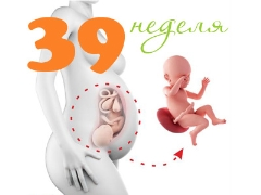 Плод на 39 неделе беременности: нормы и особенности