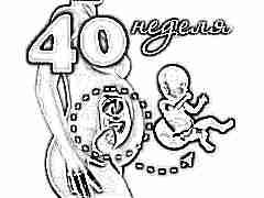 Плод на 40 неделе беременности: нормы и особенности