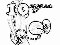 Развитие плода на 10 неделе беременности