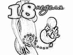 Развитие плода на 18 неделе беременности