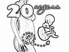 Развитие плода на 20 неделе беременности