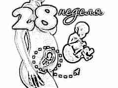 Развитие плода на 28 неделе беременности