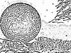 Через сколько дней созревает яйцеклетка после месячных 2
