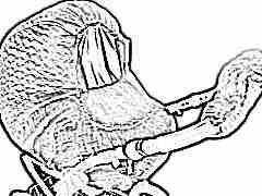 Чехол для коляски: для чего необходим и как его изготовить?