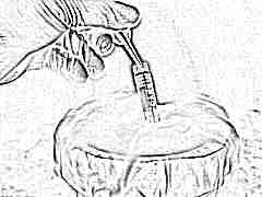 Какой метод заморозки яйцеклеток лучше выбрать и как происходит процесс?