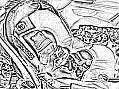 Особенности вкладышей в автолюльку для новорожденных