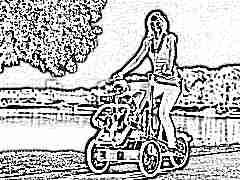 Велосипед с коляской для мамы и ребенка: особенности и советы по выбору