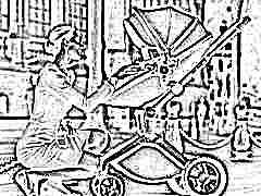 Коляски Hot Mom: достоинства и обзор ассортимента