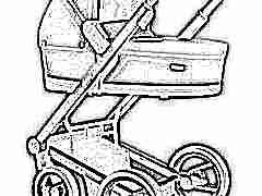 Как выбрать лучшую коляску фирмы Mutsy?