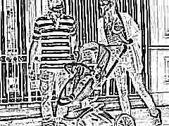 Особенности колясок Aulon