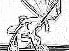 Прогулочные коляски Pituso: характеристики и виды