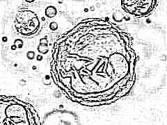 На какой день после овуляции происходит имплантация эмбриона и как долго она длится?