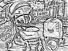 Обзор моделей и особенности колясок Nuovita Giro