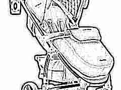 Прогулочные коляски Easygo: характеристики и модельный ряд