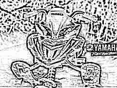 Снегокаты Yamaha: особенности моделей и советы по выбору