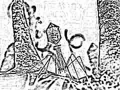Зачем применяют бактериофаги в лечении детей и какова инструкция по их применению?