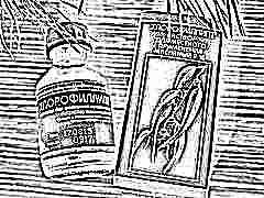 Хлорофиллипт для детей: инструкция по применению