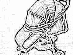 Модельный ряд и характеристика колясок Teddy Bear