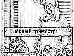 Питание беременных в первом триместре