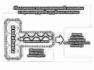 Пальмитиновая кислота в грудном молоке