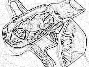Кокон переноска для новорожденных
