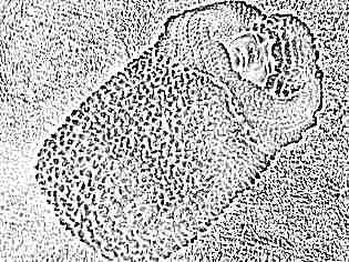 Пеленка-кокон для новорожденных вязаная спицами
