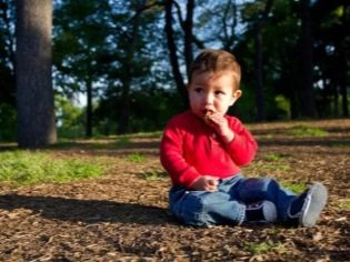 Лямблии в печени у взрослых и детей: симптомы и лечение, как определить лямблий