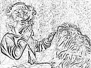 Трещины за ухом у ребенка как вылечить