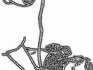 Промывание желудка детям противопоказания