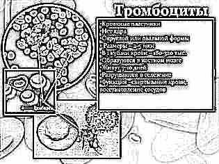 Норма тромбоцитов при беременности и их агрегация