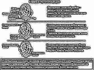 Слизистые выделения при беременности на ранних сроках 10