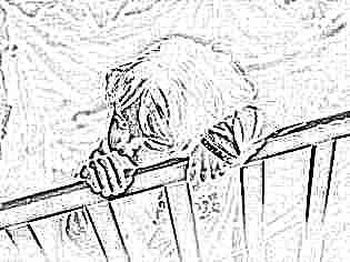 Церебролизин противопоказания для детей