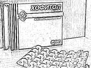 Препарат хофитол инструкция