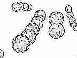 Пиобактериофаг - показания для детей и взрослых, способ использования и дозировка, противопоказания