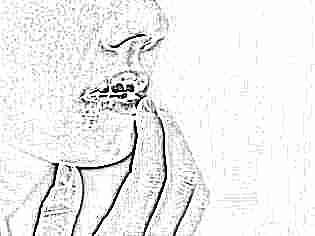 Психосоматика вируса герпеса на губах