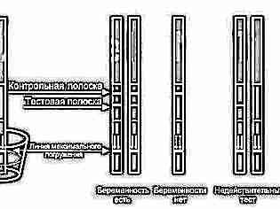 Полторы полоски на тесте на беременность