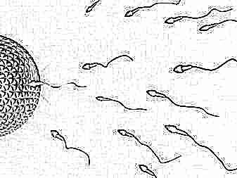 Как зачать двойню, близнецов, двойняшек естественным путем, как происходит зачатие близняшек