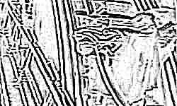 Фото ценою жизни: в Индии любительница селфи выронила грудного ребенка на эскалаторе