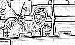 Депутат Госдумы Виталий Милонов стал отцом в шестой раз