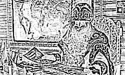 Дед Мороз ждет поздравлений от российских детей