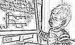 Миллион рублей за хорошие знания: детям – победителям школьных олимпиад учредят премии