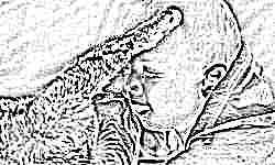 Усатые «целители»: учёные обнаружили, что кошки и собаки снижают риск детской аллергии