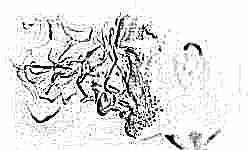 Учёные обнаружили неожиданные последствия курения будущих отцов для их детей