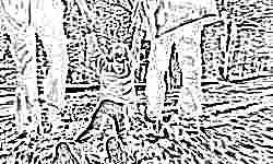 За похищение ребенка вторым родителем в России могут ввести уголовную ответственность